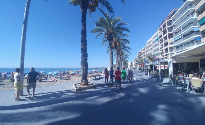 Appartement - Occasion - Torrevieja - Playa