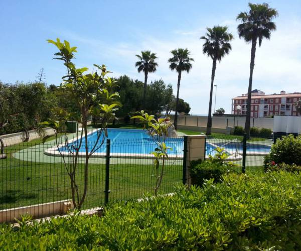 Apartament - investments - La Mata - Pueblo/ PLAYA