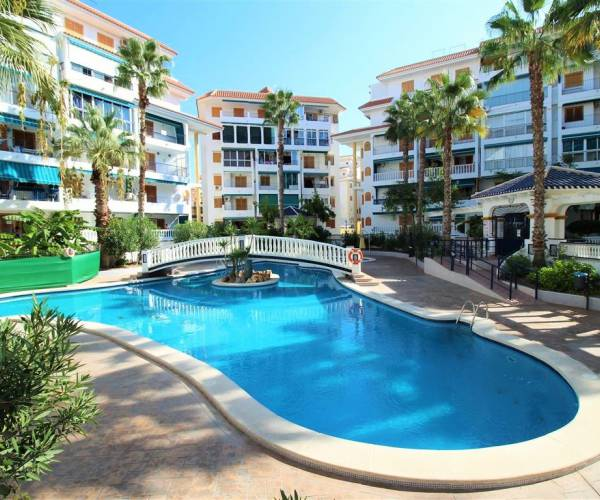 Apartament - Rental - La Mata - Viñamar / PLAYA